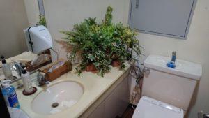 何てことでしょう落ち着いたトイレ